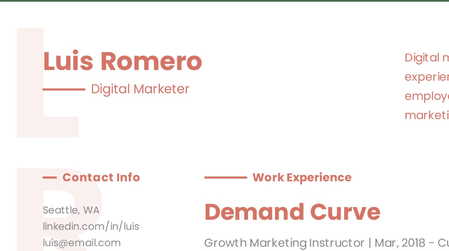 Design details of modern Digital Marketer resume sample.