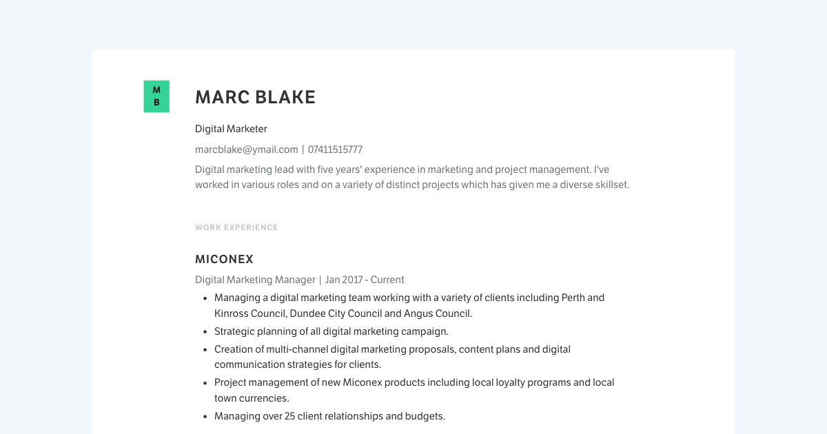 Digital Marketer resume template sample made with Standard Resume
